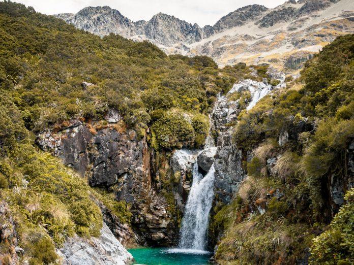 Te Araroa trail / Foto: Sebastien Goldberg (unsplash)