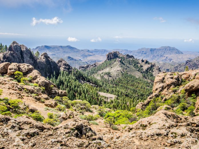 Gran Canaria, Canarias / Foto: Radek (unsplash)