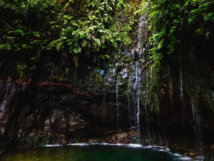 Madeira / Foto: Josefin (unsplash)