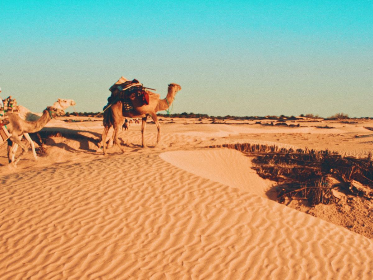 Tatooine, Túnez / Foto: Greg Keelen (unsplash)