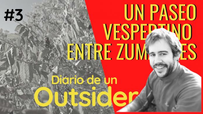 #3# D' Outsider_un paseo vespertino entre zumaques